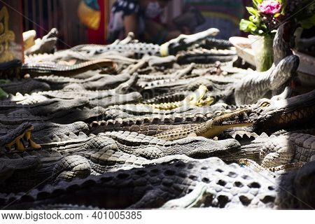Thai People Use Crocodile Figure Model Sacrificial Offering Rite Ritual Offers To Deity Angel God At