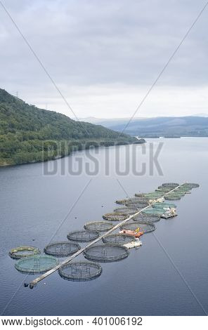 Fish Farm Salmon Round Nets In Natural Environment Loch Awe Arygll And Bute Scotland