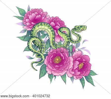 Hand Drawn Twisted Snake Among Peony Flowers Isolated On White. Vector Spotted Green Garden Boa And