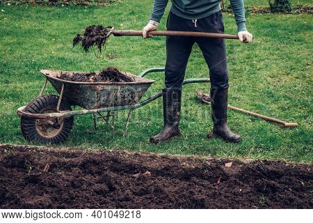 Young Gardener In Old Tracksuit Doing Dirty Work. The Farmer Uses A Wooden Pitchfork To Put Manure I