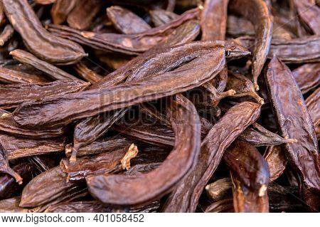 Close Up Of Carob Pods Heap Or Ceratonia Siliqua Background