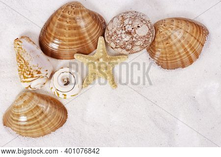 Seashells And Colored Stones On Sand. Summer Concept. Seashells Close Up.