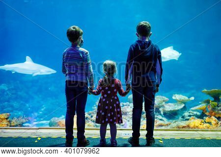 Two Kids Boys And Toddler Girl Visiting Together Zoo Aquarium. Three Children Watching Fishes And Je