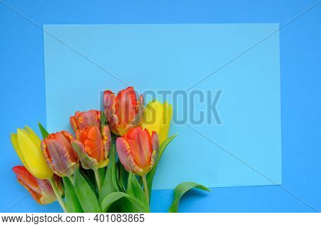 Tulips Flowers.floral Card With Tulips.red And Yellow Tulips Bouquet Close-up On A Bright Light Blue