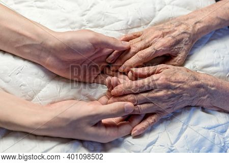 Old And Young Hands. Hands Of An Old Woman-82 Years In The Young Hands Of A Grandson.