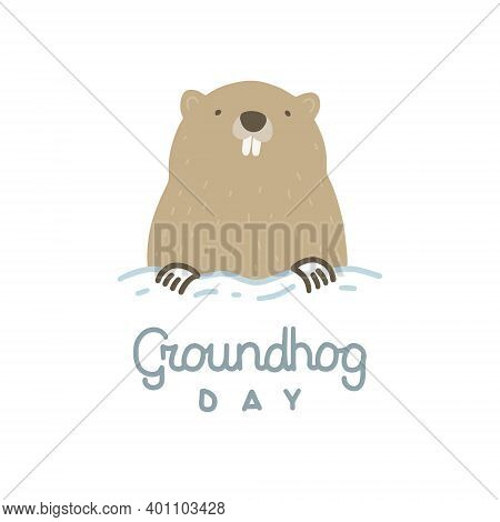 Vector Illustration On The Theme Of Groundhog Day On February 2. Decorated With A Lettering And Grou