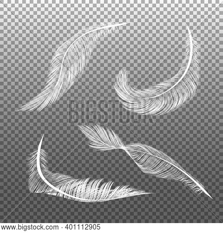 Realistic White Feathers. Flying Furry Weightless White Swan Objects Vector Isolated On Dark Backgro