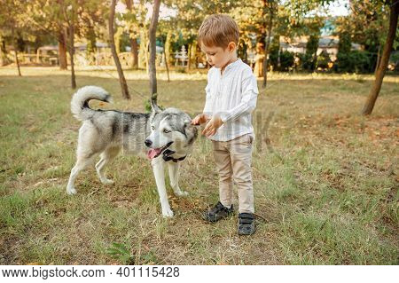 Little Boy Walking With His Dog. Kid Playing With His Puppy In The Park. Portrait Of Happy Caucasian