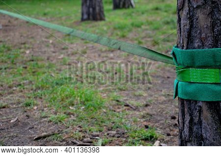 Slackline, Or Slack For Short, Is Balancing, Walking, And Jumping On A Strap Attached Between Two Po