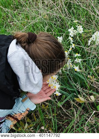 The Girl Bent Over Flowers With Wild Daffodils Stretched Out Her Hands To Them And Admires Them Snif