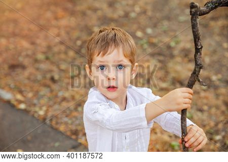 Portrait Of Surprised Cute Little Toddler Boy Child. Beautiful Boy With Funny Expression. A Young Bo