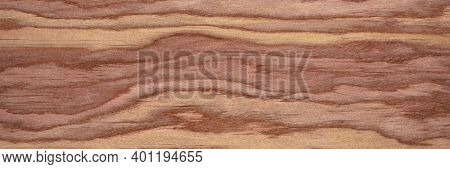 background and texture of wood veneer - red cedar tree, panoramic web banner