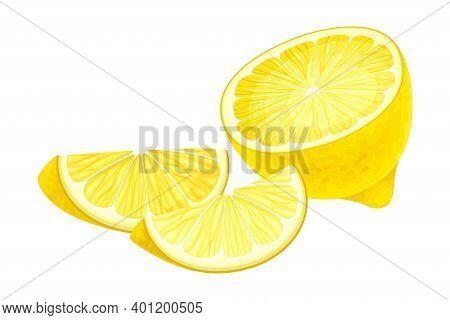 Halved Lemon Ellipsoidal Yellow Fruit With Sour Taste Vector Illustration