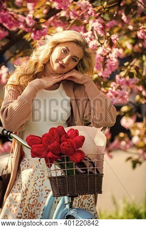 Bike Ride Tours. Woman Ride Vintage Bicycle. Romantic Girl And Sakura Blossom. Spring Season. Cherry