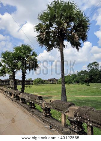 Ancient Park Angkor Wat