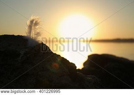 Feather At Beach On Sunset, Closeup. Healing Concept