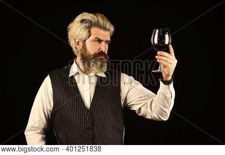 Wine Tasting. Male Skilled Sommelier Estimates Alcoholic Drink. Red Wine In Long-stemmed Wineglasses
