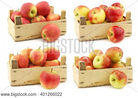 fresh red and yellow apples,fresh new Dutch apple variety called