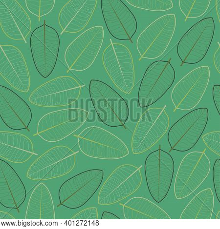 Seamless Graphic Ditsy Vector Foliate Pattern Design Of Exotic Leaves Outlines. Artistic Foliage Tex