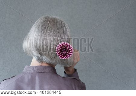 Silver-haired Lady With Red Dahlia Flower, On Gray Background With Copy Space.