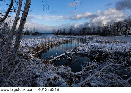 Snowy Rattray Marsh Conservation Area In Mississauga Ontario, Canada
