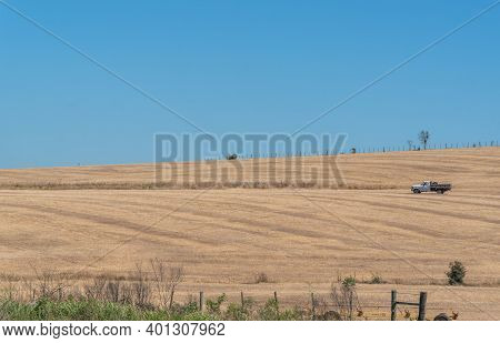 Rural Landscape Of Soybean Fields Ready For Sowing In Brazil