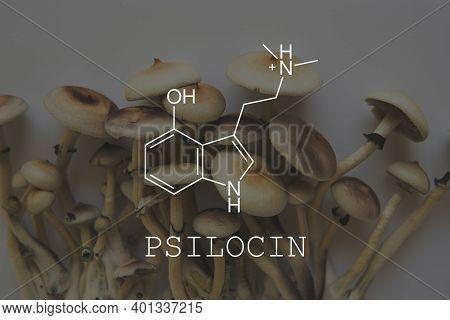 Psilocin Psychedelic Formula. Psychoactive Natural Drug. Recreational Use Of Psilocybin Mushrooms.