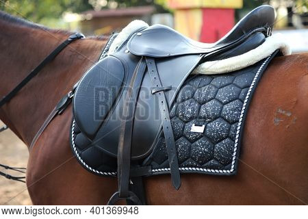 Old Leather Saddle With Stirrups For Show Jumping Race Saddle On A Back Of A Sport Horse. Equestrian