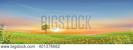 Spring Lanscape With Morning Sky And Single Tree On Green Grass Fields, Natural Farmland With Orange
