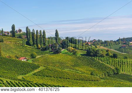 Vineyards Along South Styrian Wine Road, A Charming Region On The Border Between Austria And Sloveni