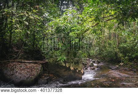 Tropical Lush Green Forest And Cascade Of Small River Stream Among Stones Rocks In Thai Beautiful Pa