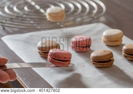 A Baker Lifting Homemade Macaroons Or Macarons Onto A Cooling Rack After Baking These Delicious, Swe