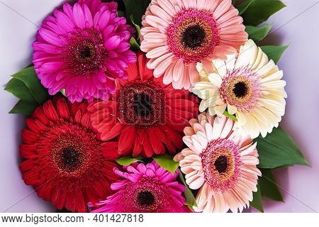 Gerbera Flowers Bouquet. Floral Background. Red, Yellow, Pink  Flower Heads