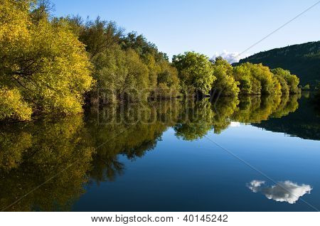 Riverbank Tree Line And River Reflection