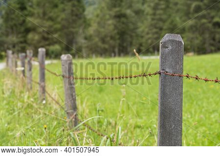 Barbed Wire Fence As The Boundary Of A Pasture - Rusty Barbed Wire On Pastureland