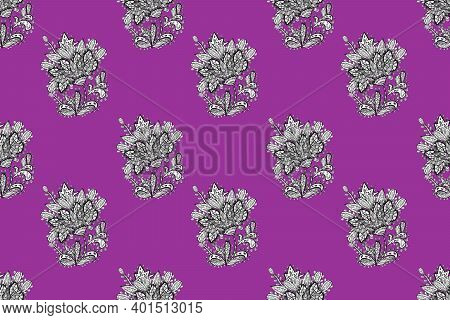 Seamless Raster Pano Pictures On Colorful Background