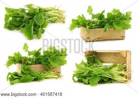 fresh turnip tops (turnip greens) and some in a wooden crate on a white background