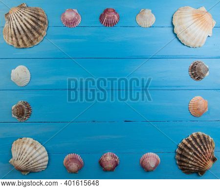 Sea Wooden Background Of Blue Color With Seashells. Natural Seashells. The Basis For The Design Of T