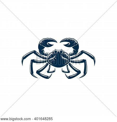 Porcelain Crab Isolated Blue Decapods Crustacean With Pincers. Vector Seafood, Hard Shell Marine Ani