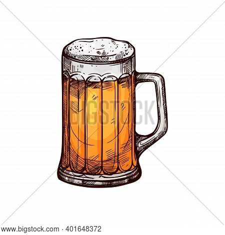 Frosty Beer Or Ale In Mug Isolated Alcohol Drink Sketch. Vector Oktoberfest Beverage, Lager In Glass