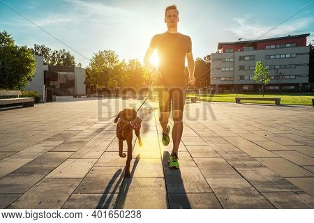 Silhouettes of runner and dog on city street under sunrise sky in morning time. Outdoor walking. Athletic young man with his dog are running in town.