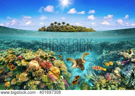 Collage About Tropical Beach With Beautiful Underwater World On A Sunny Day. Beautiful Island Paradi