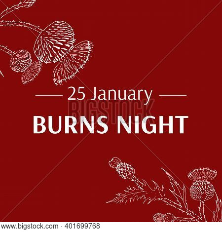 Burns Night Supper Card. Thistle On Red Background. Burns Night - National Holiday In Scotland. Temp