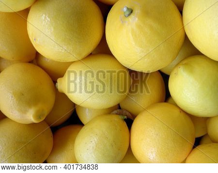 Pile Of Large Lemons Found At A Farmers Market.