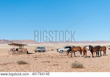 Garub, Namibia - June 24, 2012: Wild Horses Of The Namib At The Viewpoint At Garub. People And Vehic