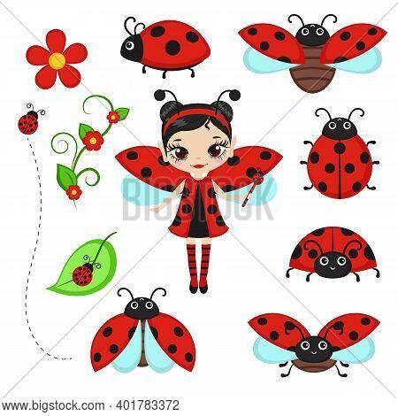 Fairy In Ladybug Costume With Ladybug Characters. Vector Illustration.