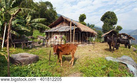 Beautiful House In Nepal, Khumbu Valley, Solukhumbu, Nepal Himalayas