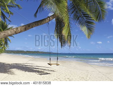 Wooden Swing On Palm Tree On Tropical Golden Sand Beach. Caribbean Landscape. Swing Hangs Under Coco