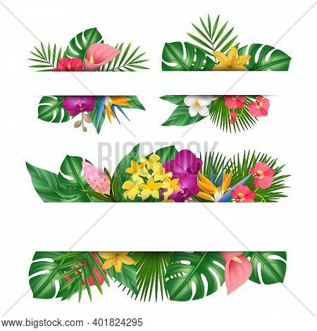 Exotic Flowers Banner. Tropical Leaves, Jungle Plants And Flower Blank Flyers Vector Set. Illustrati