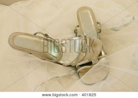 Ladies Strap Shoe 2